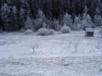winterdreamus5.th.jpg
